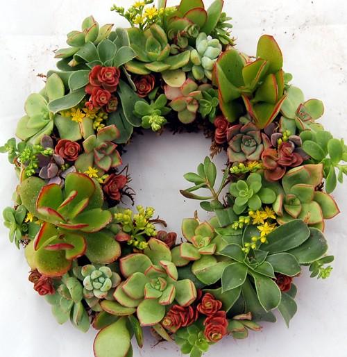 California flower art