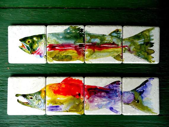 rainbow trout coasters