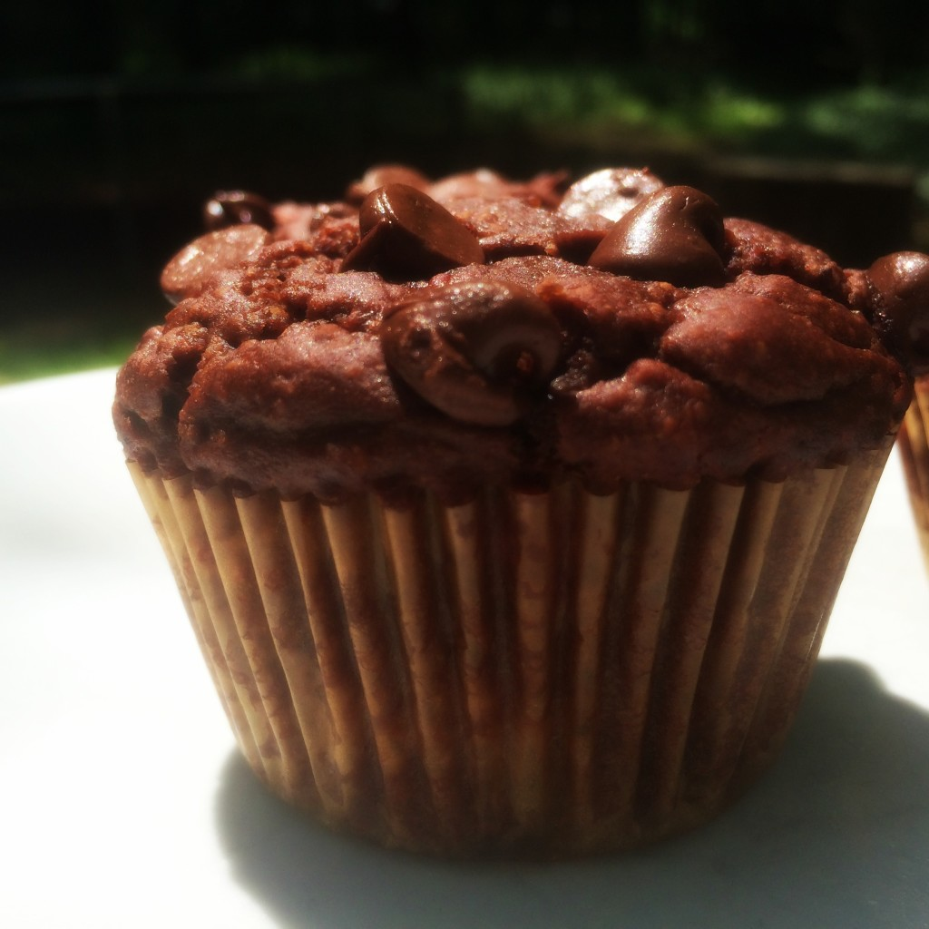 chocolate berry muffin